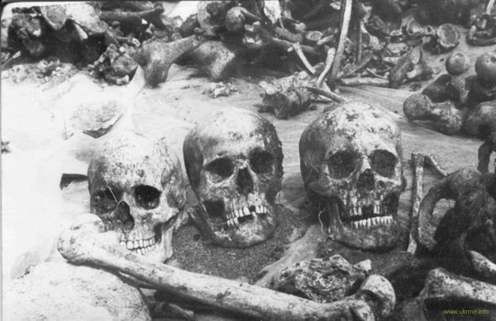 нацисты использовали трагедию Рутченкова в своей пропаганде
