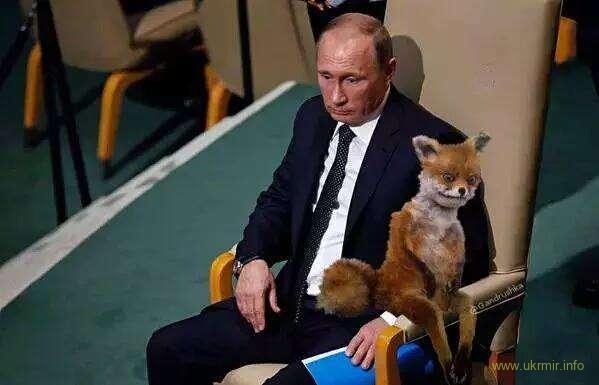 Режим Путина близок к тому, чтобы его признали террористическим.