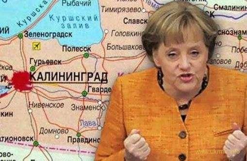 В Германии предложили провести в Калининграде референдум о выходе из состава РФ