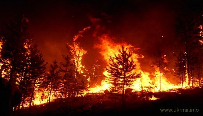В Бурятии продолжает гореть более 1,7 тыс. гектаров леса