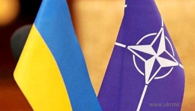 В Минобороны Украины работают 65 советников из стран НАТО