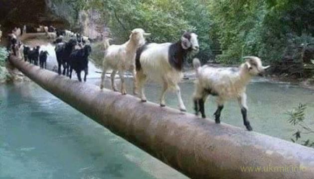 Керченский мост рухнет, окончательный приговор