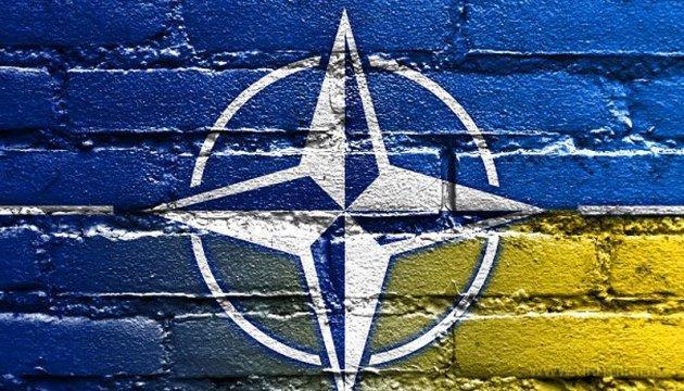 В Брюсселе проходит сессия военного комитета НАТО, посвященная Украине