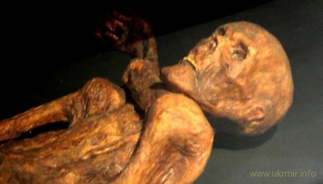 На РФ у пенсионерки нашли две ухоженных мумии родственников