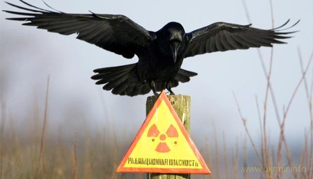 На Курской АЭС произошел пожар