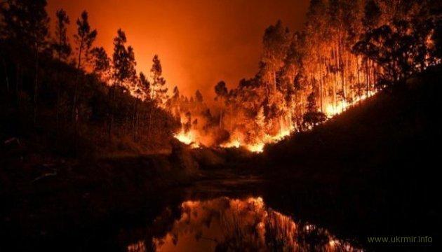 В Сибири и на Дальнем Востоке бушуют лесные пожары