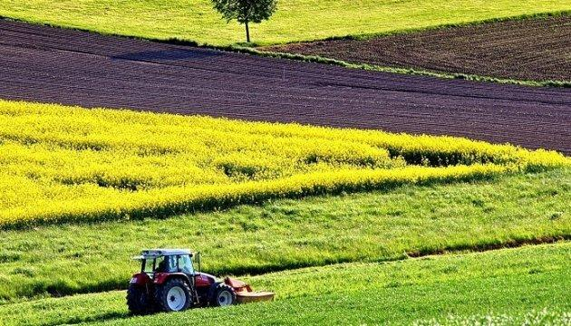 Уряд передасть півмільйона гектарів землі у власність фермерів