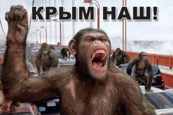 Русскимирок превращает Крым в свою грязную витрину...