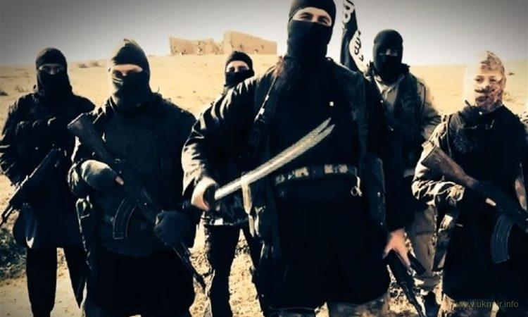 Теперь Россию будут взрывать по настоящему: все террористы остались на родине, путин в курсе :)