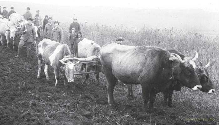 27 грудня московські окупанти почали знищення українського селянства, що призвело до геноциду