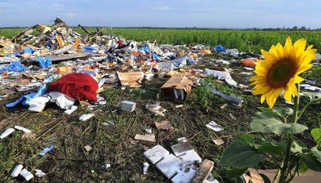 Международное расследование катастрофы MH17 вышло к финалу