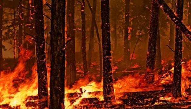 Пожары на Дальний Восток пришли с опережением графика