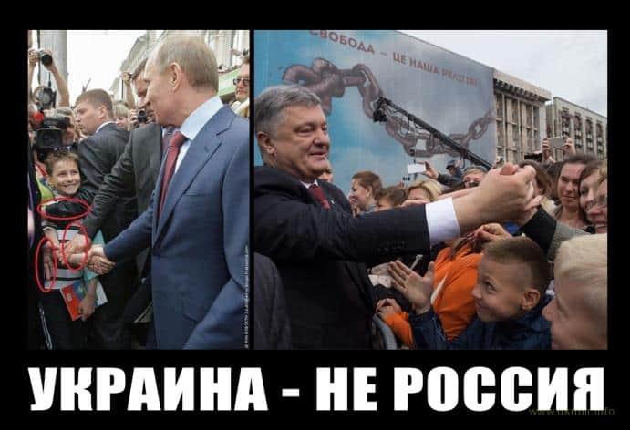 Народный Президент vs трусливый член