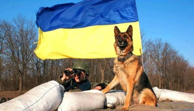 Українські собаки-рятувальники увійшли до ТОП найкращих у світі!