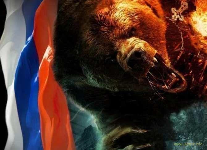 Не поворачивайся к медведю спиной